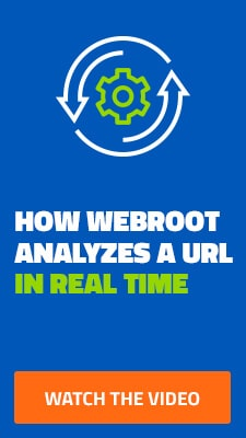 How Webroot Analyzes a URL in Realtime
